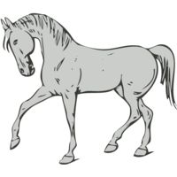 Animals   Horse Thumbnail
